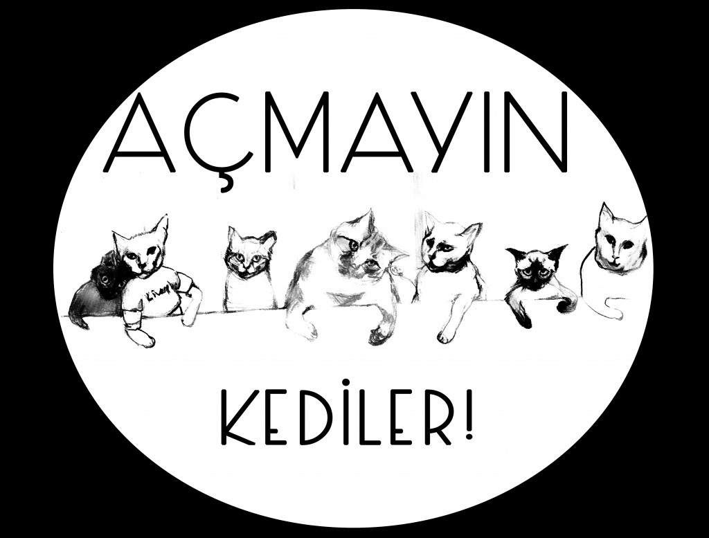 acmayinkediler8